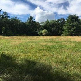 Hubbardston Site